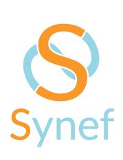 Huisstijl Synef-0