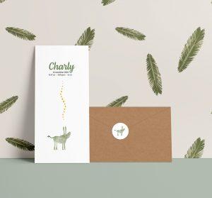 geboortekaartje-voorbeeld-ezeltje-groen-envelop-en-kaart