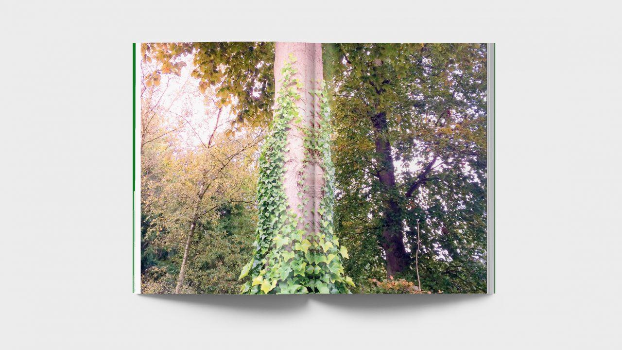 """spread foto voor het boek """"Om mensen gaat het"""""""